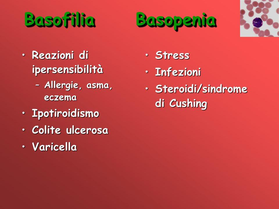 Basofilia Basopenia Reazioni di ipersensibilità Ipotiroidismo