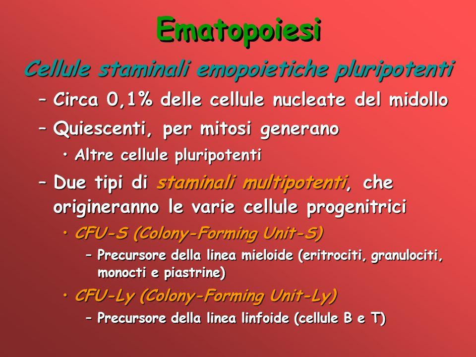 Cellule staminali emopoietiche pluripotenti