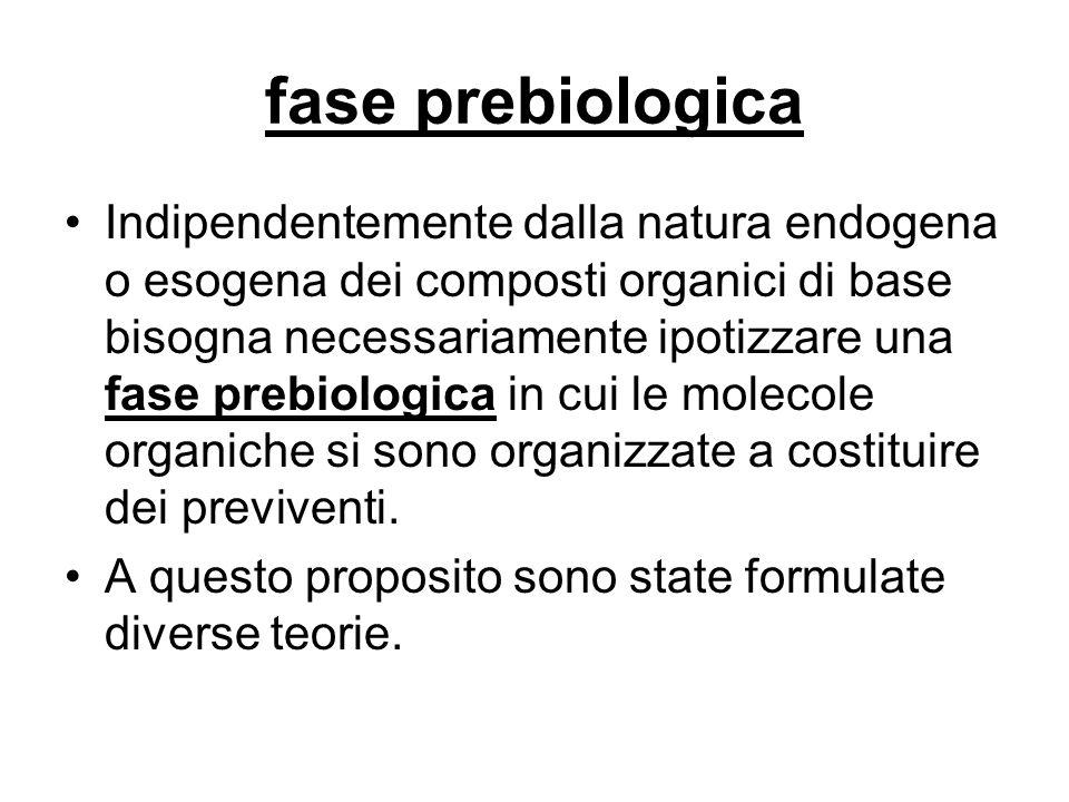 fase prebiologica