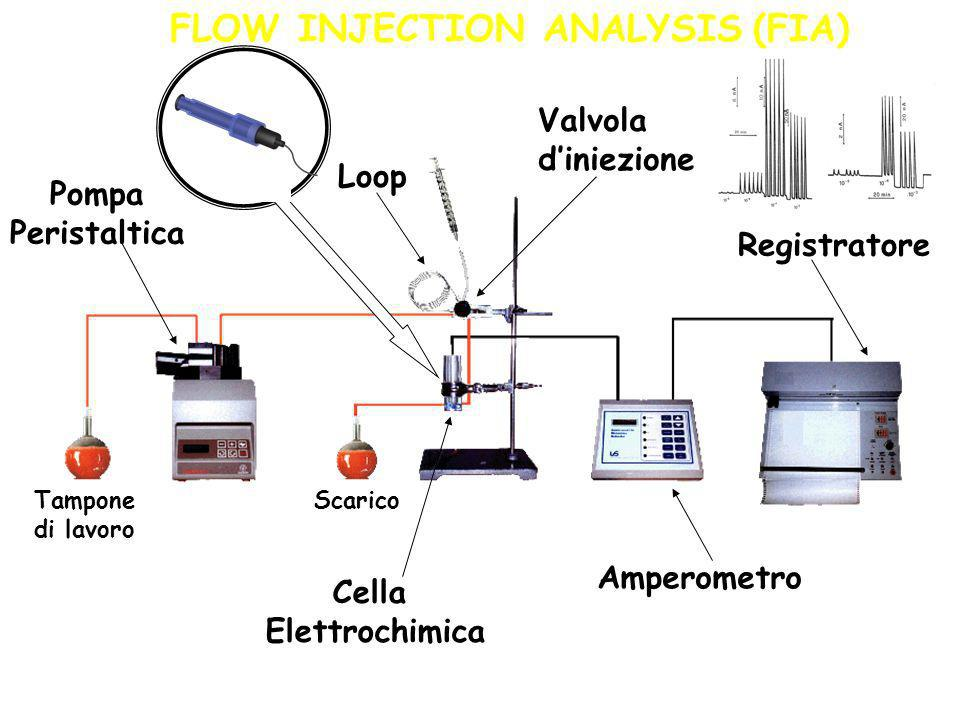 FLOW INJECTION ANALYSIS (FIA)