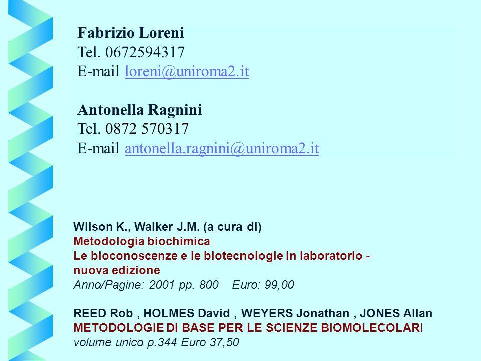 E-mail loreni@uniroma2.it Antonella Ragnini Tel. 0872 570317