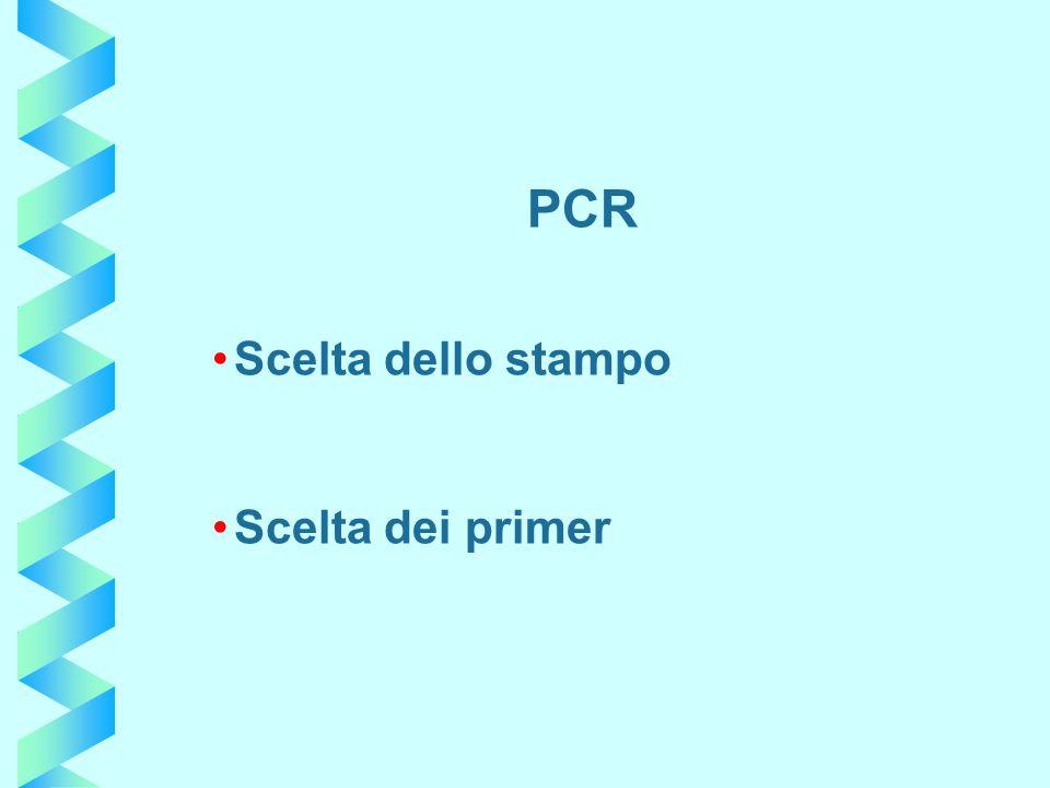 PCR Scelta dello stampo Scelta dei primer