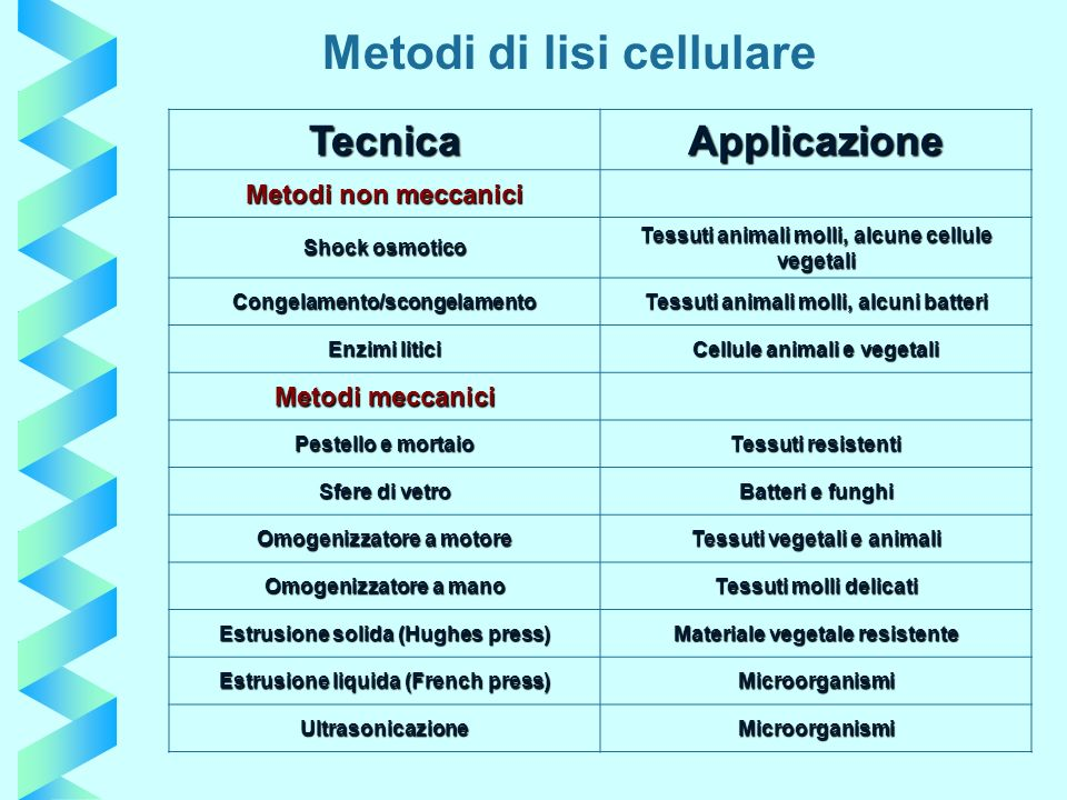 Metodi di lisi cellulare