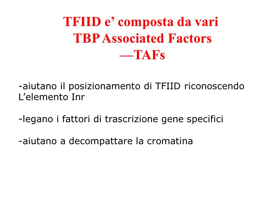 TFIID e' composta da vari TBP Associated Factors