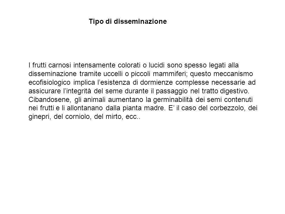 Tipo di disseminazione