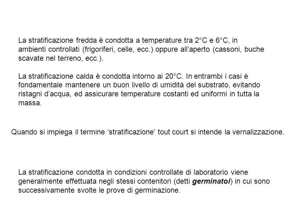 La stratificazione fredda è condotta a temperature tra 2°C e 6°C, in