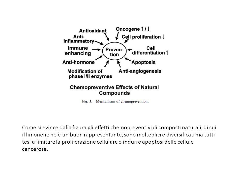 Come si evince dalla figura gli effetti chemopreventivi di composti naturali, di cui il limonene ne è un buon rappresentante, sono molteplici e diversificati ma tutti tesi a limitare la proliferazione cellulare o indurre apoptosi delle cellule cancerose.