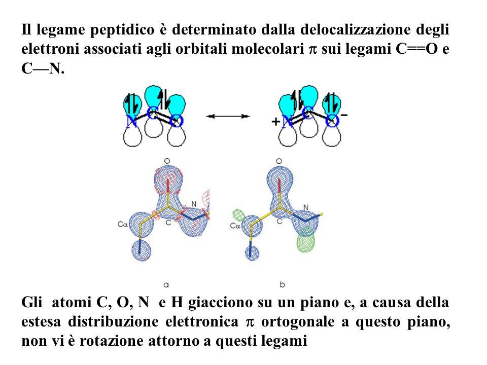 Il legame peptidico è determinato dalla delocalizzazione degli elettroni associati agli orbitali molecolari  sui legami C==O e C—N.
