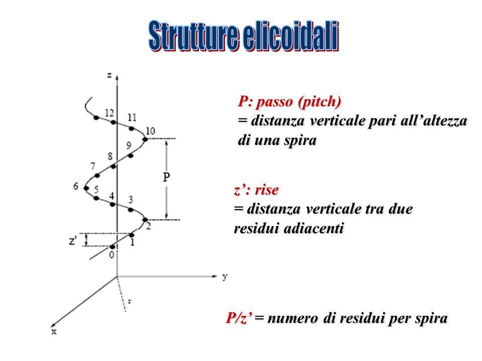Strutture elicoidali P: passo (pitch)