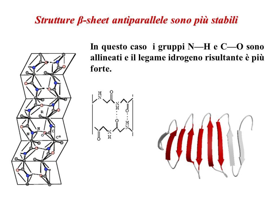 Strutture β-sheet antiparallele sono più stabili