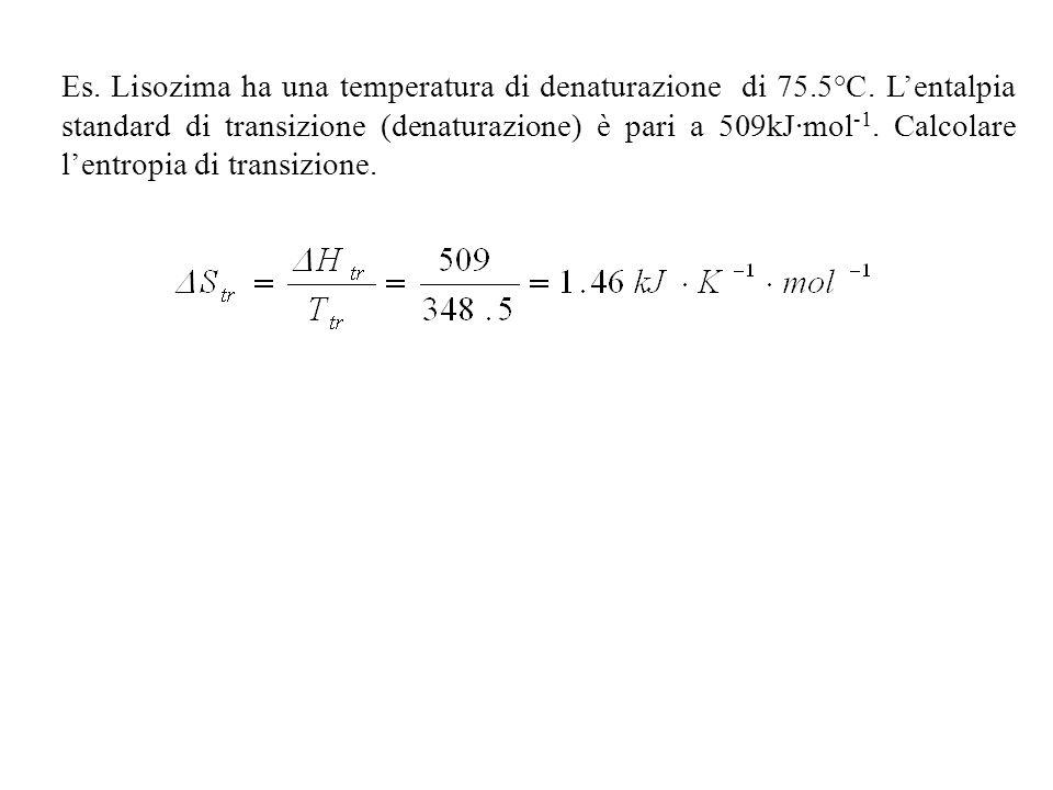 Es. Lisozima ha una temperatura di denaturazione di 75. 5°C