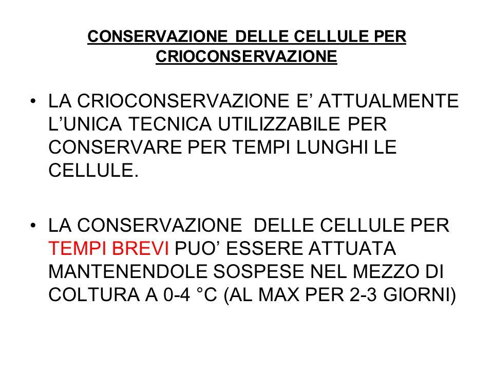 CONSERVAZIONE DELLE CELLULE PER CRIOCONSERVAZIONE