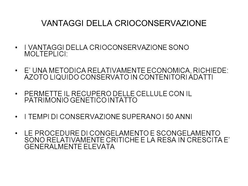 VANTAGGI DELLA CRIOCONSERVAZIONE