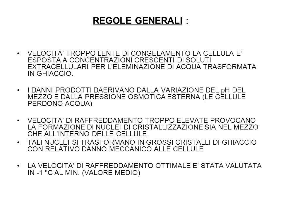 REGOLE GENERALI :