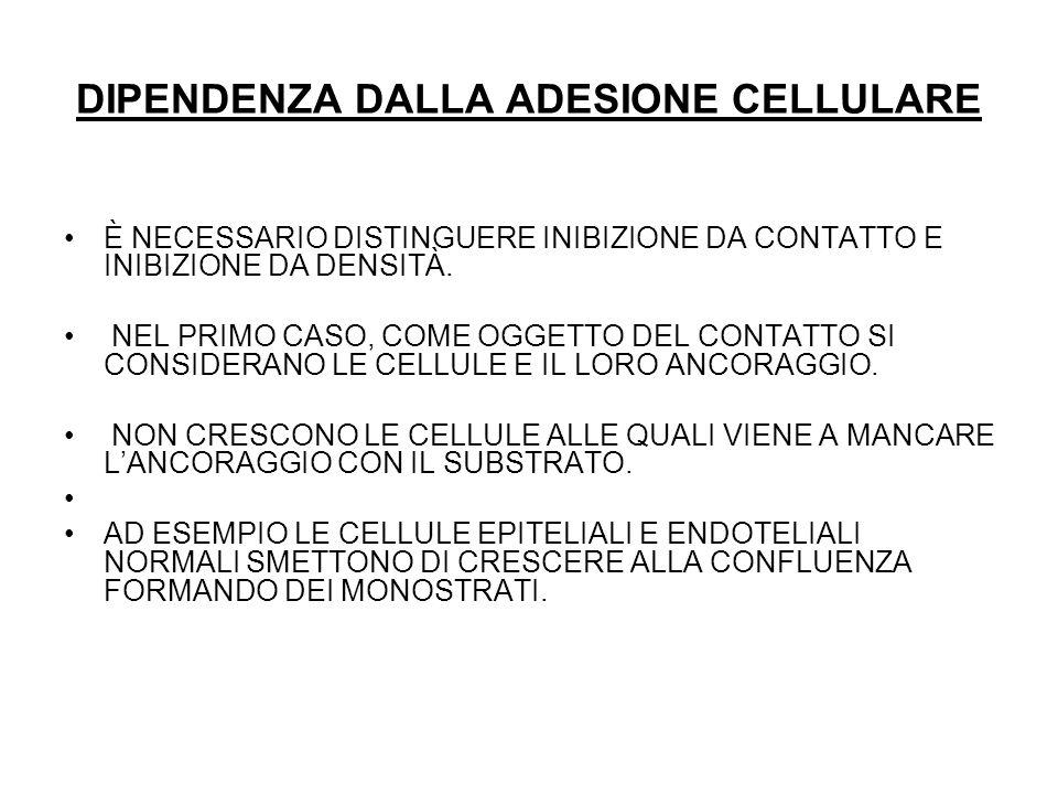 DIPENDENZA DALLA ADESIONE CELLULARE