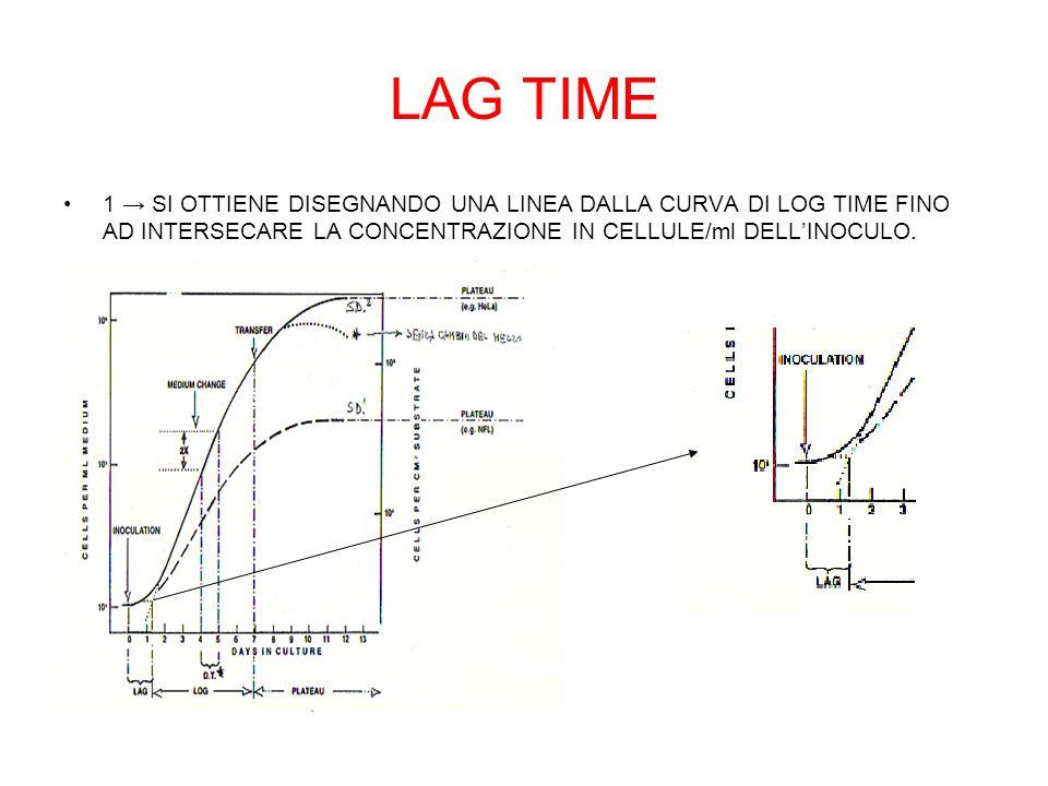 LAG TIME 1 → SI OTTIENE DISEGNANDO UNA LINEA DALLA CURVA DI LOG TIME FINO AD INTERSECARE LA CONCENTRAZIONE IN CELLULE/ml DELL'INOCULO.