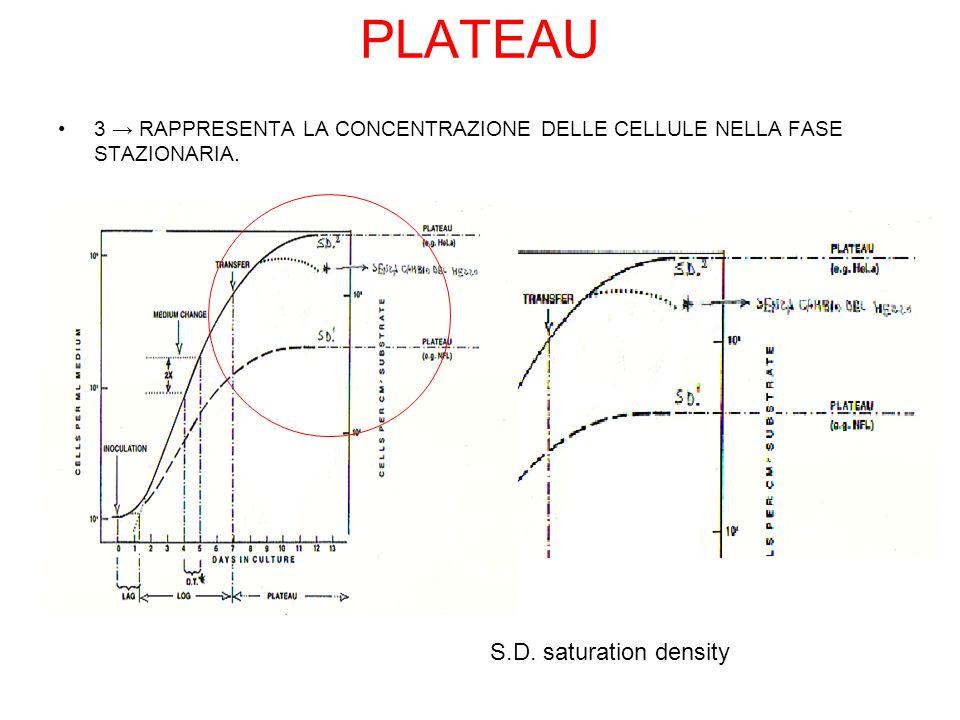 PLATEAU S.D. saturation density