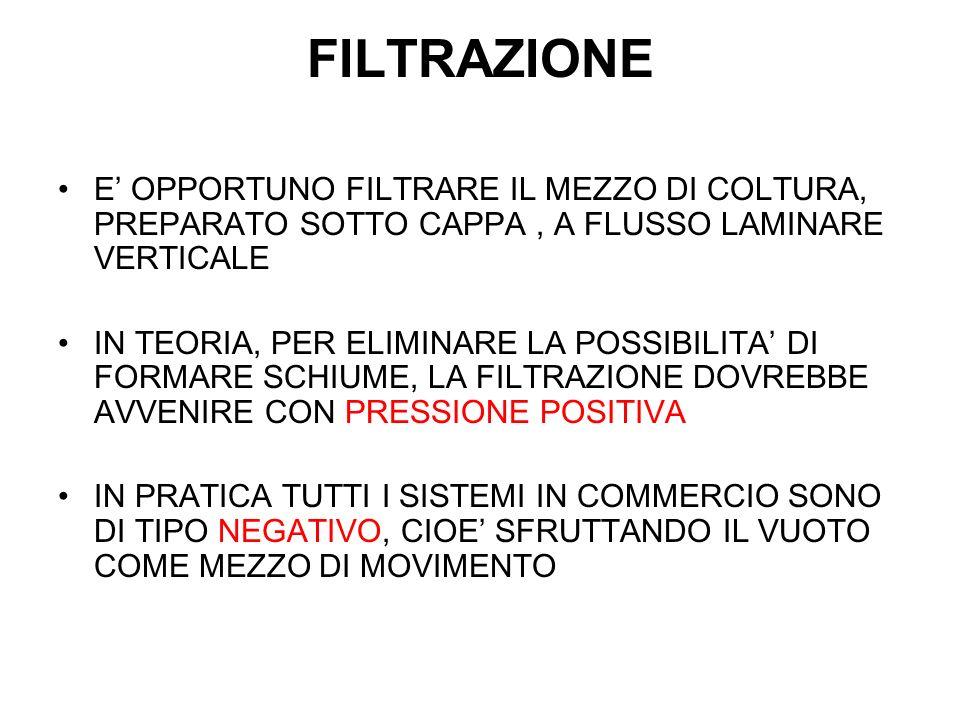FILTRAZIONE E' OPPORTUNO FILTRARE IL MEZZO DI COLTURA, PREPARATO SOTTO CAPPA , A FLUSSO LAMINARE VERTICALE.