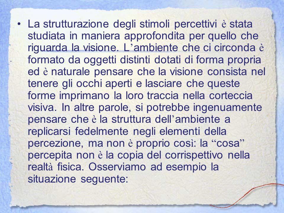 La strutturazione degli stimoli percettivi è stata studiata in maniera approfondita per quello che riguarda la visione.
