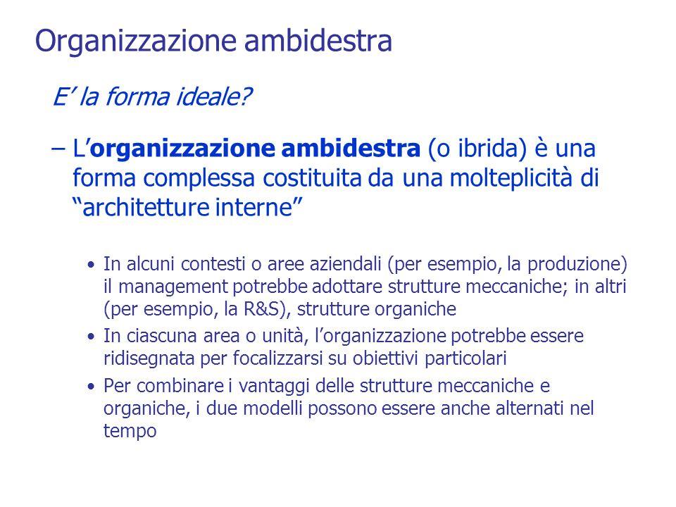 Organizzazione ambidestra