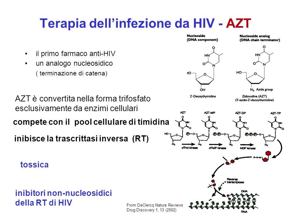 Terapia dell'infezione da HIV - AZT