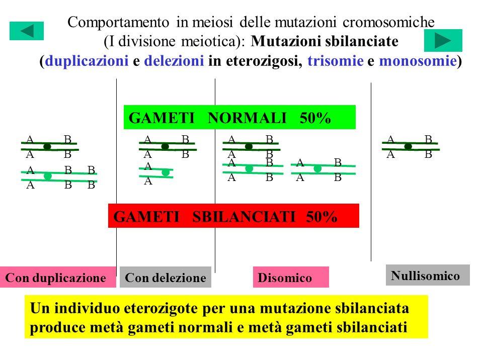 Comportamento in meiosi delle mutazioni cromosomiche (I divisione meiotica): Mutazioni sbilanciate (duplicazioni e delezioni in eterozigosi, trisomie e monosomie)
