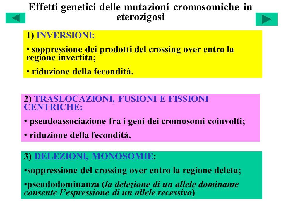 Effetti genetici delle mutazioni cromosomiche in eterozigosi