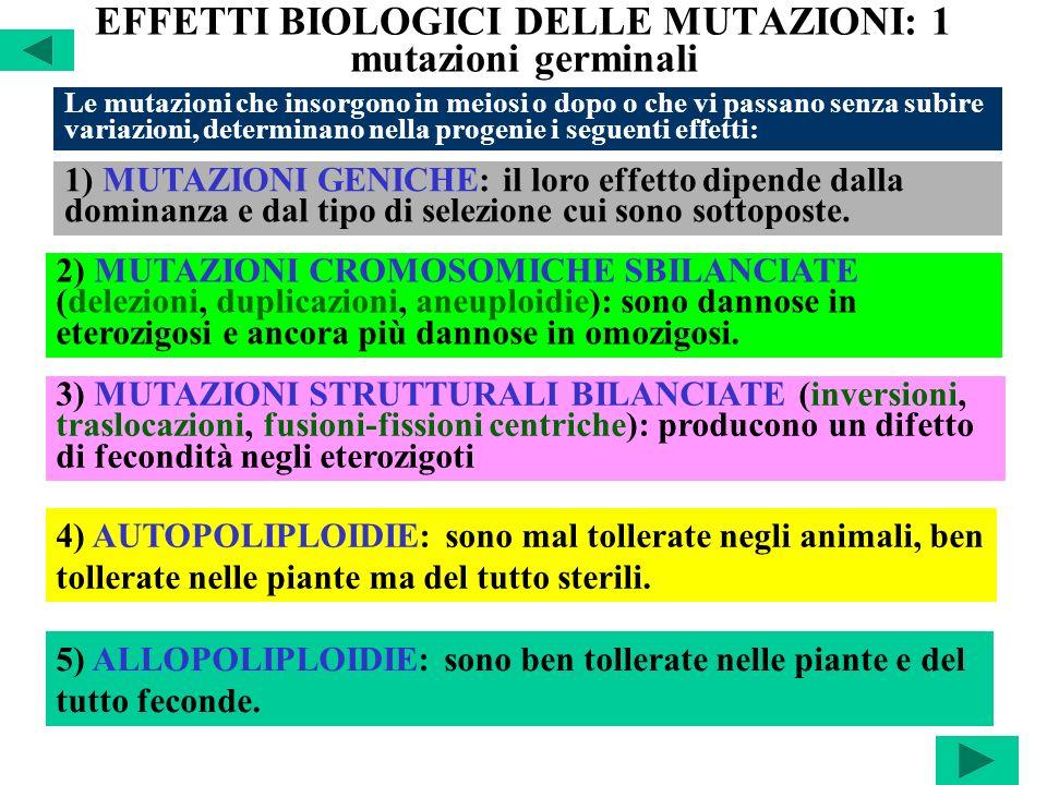 EFFETTI BIOLOGICI DELLE MUTAZIONI: 1 mutazioni germinali
