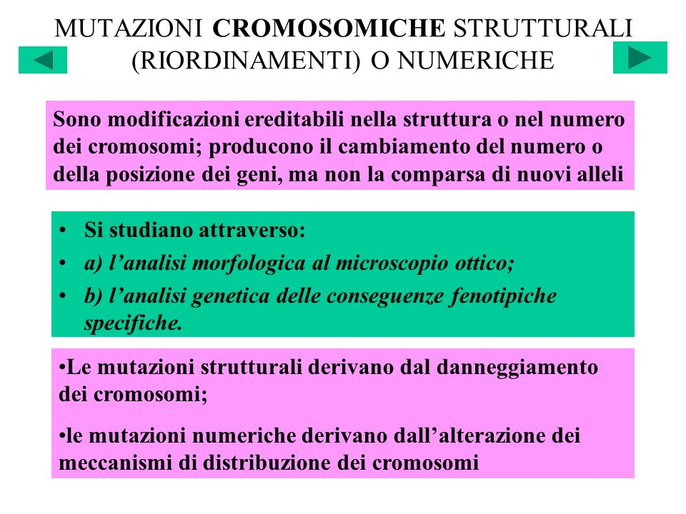 MUTAZIONI CROMOSOMICHE STRUTTURALI (RIORDINAMENTI) O NUMERICHE