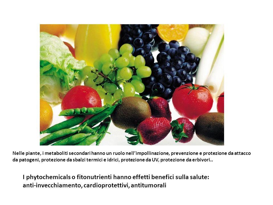 I phytochemicals o fitonutrienti hanno effetti benefici sulla salute: