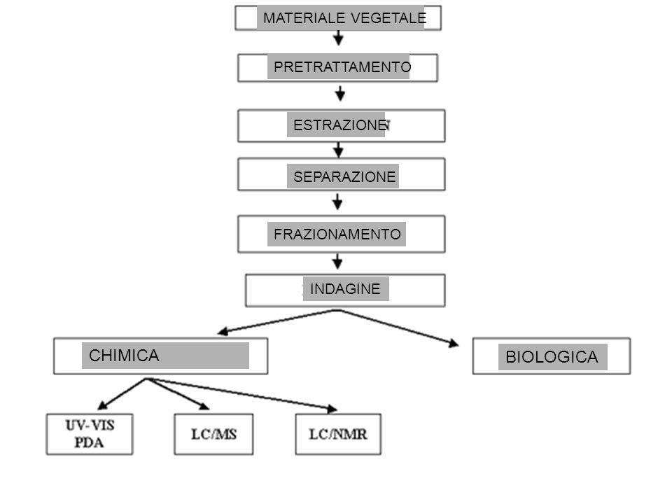 CHIMICA BIOLOGICA MATERIALE VEGETALE PRETRATTAMENTO ESTRAZIONE