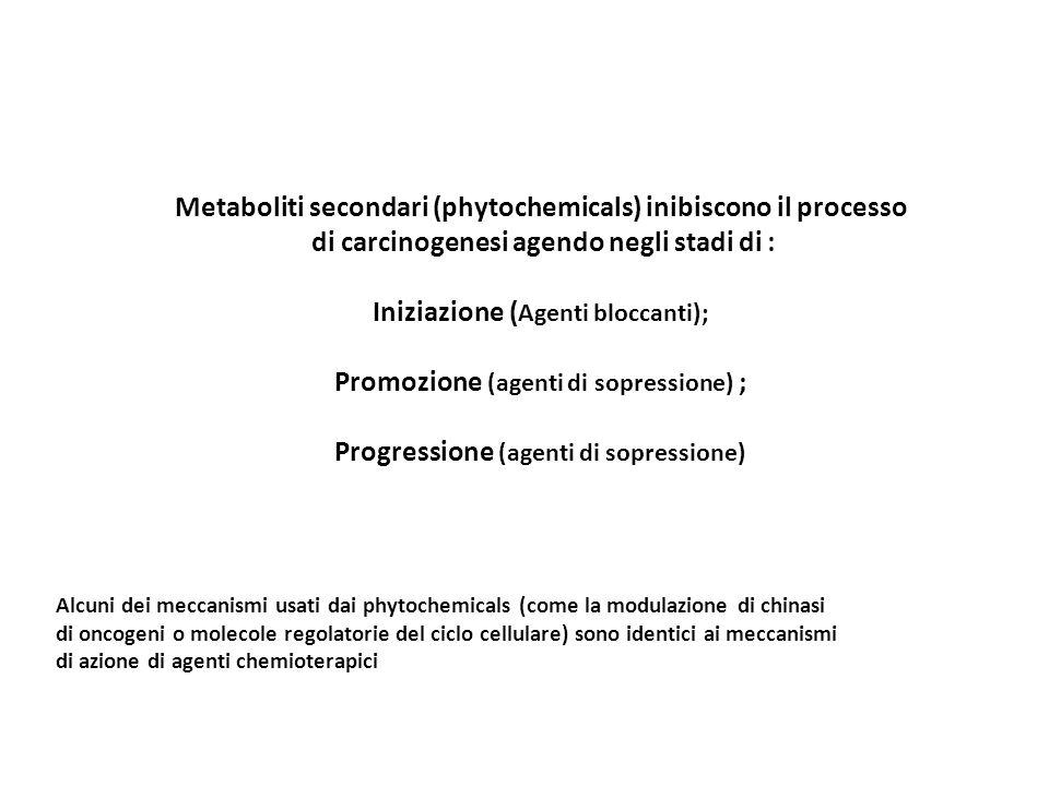 Metaboliti secondari (phytochemicals) inibiscono il processo