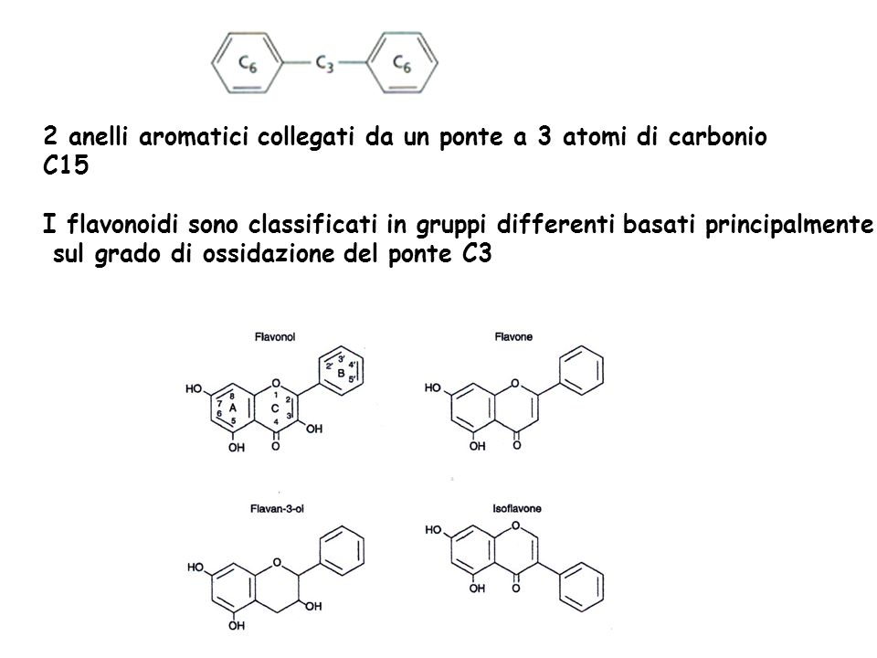 2 anelli aromatici collegati da un ponte a 3 atomi di carbonio