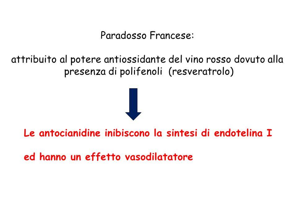 attribuito al potere antiossidante del vino rosso dovuto alla