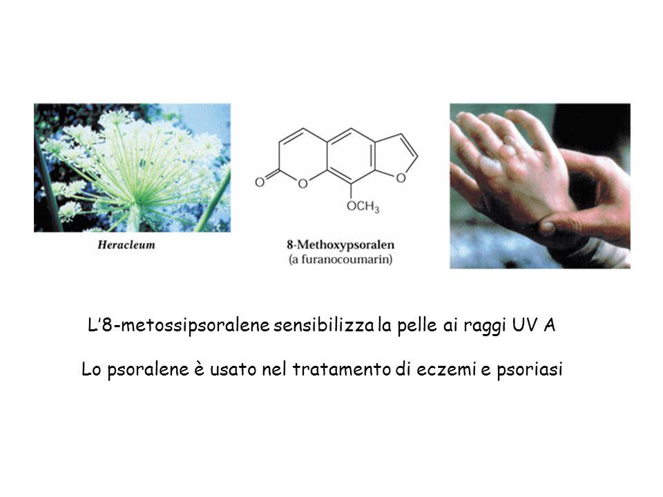 L'8-metossipsoralene sensibilizza la pelle ai raggi UV A