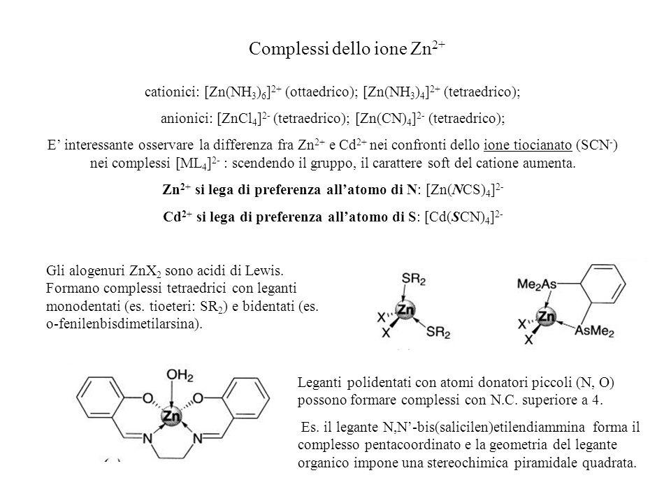 Complessi dello ione Zn2+