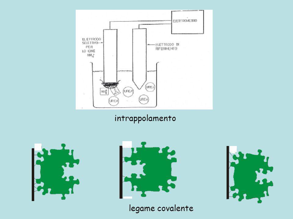 intrappolamento legame covalente