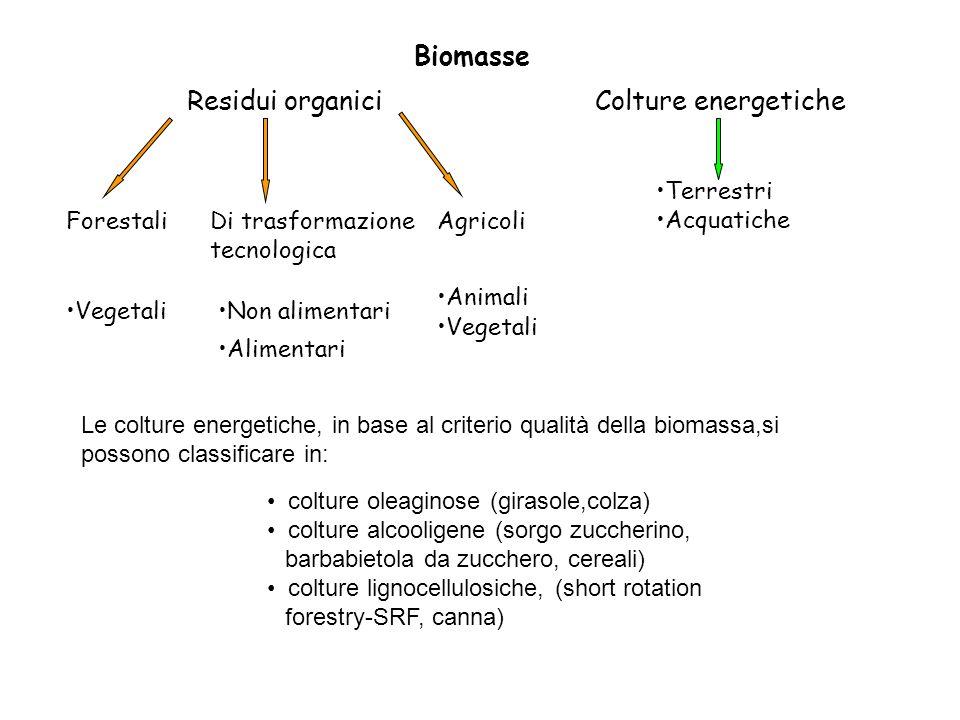 Biomasse Residui organici Colture energetiche Terrestri Acquatiche
