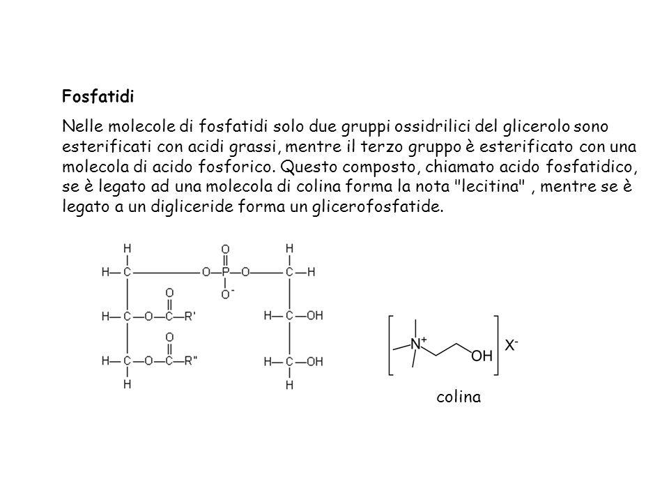 Fosfatidi
