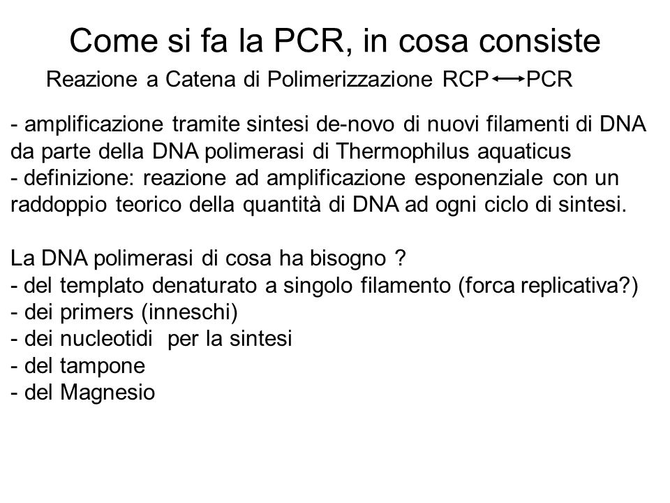 Come si fa la PCR, in cosa consiste