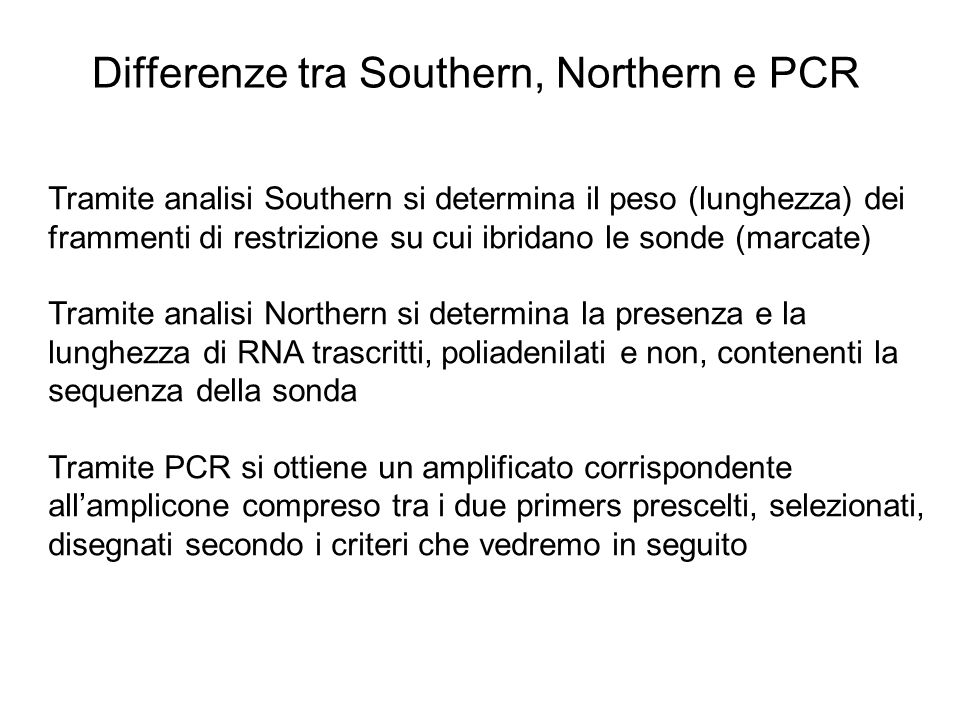 Differenze tra Southern, Northern e PCR