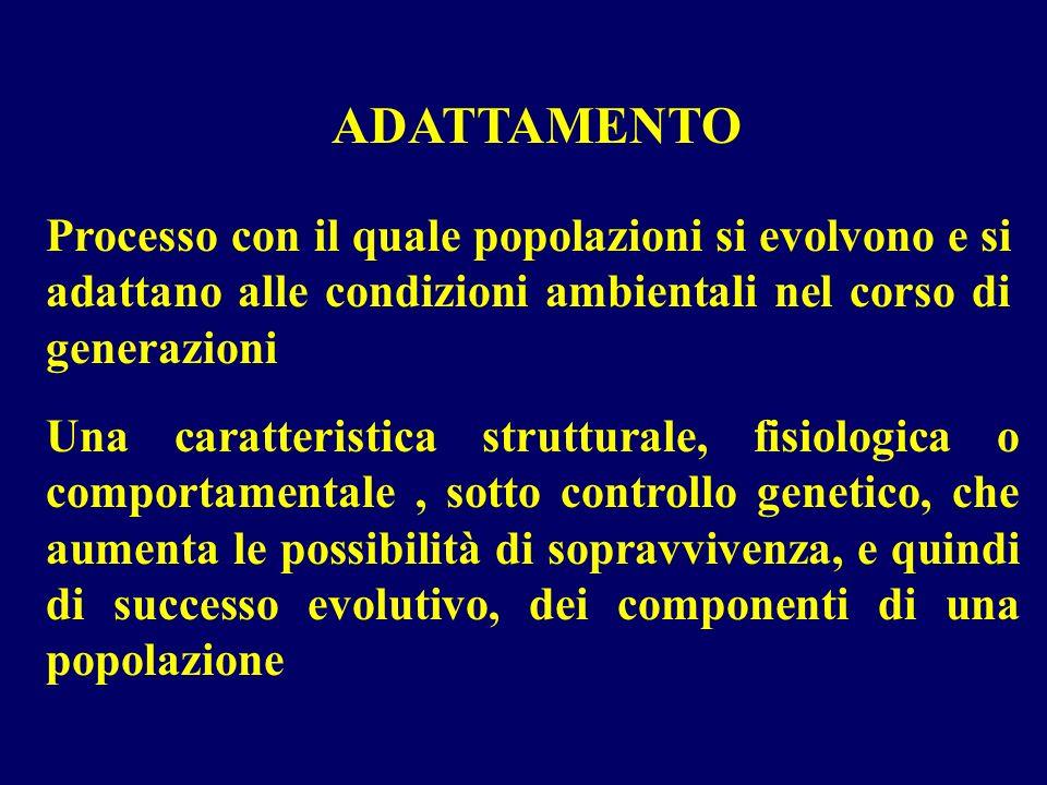 ADATTAMENTO Processo con il quale popolazioni si evolvono e si adattano alle condizioni ambientali nel corso di generazioni.