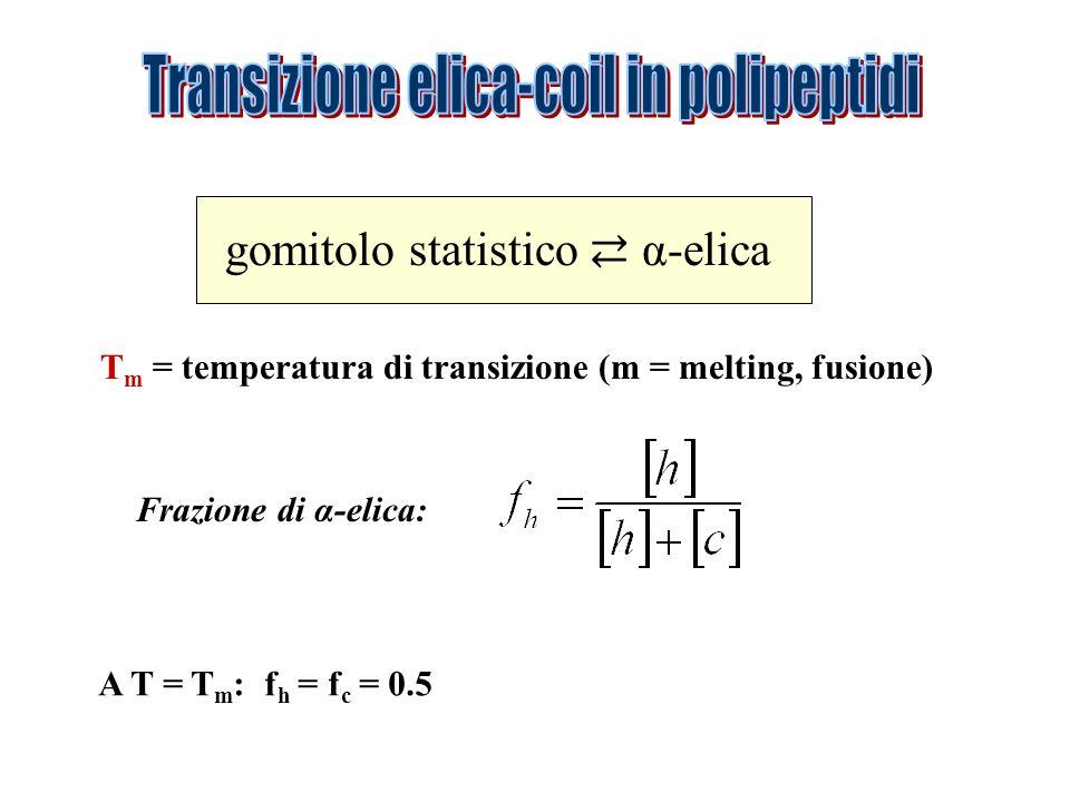 Transizione elica-coil in polipeptidi