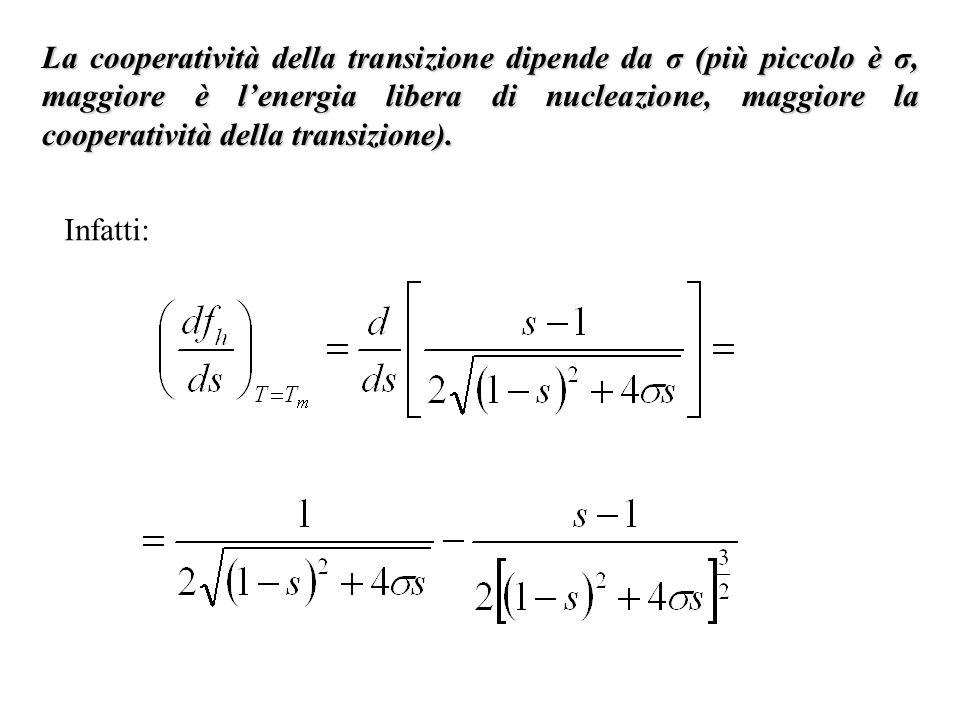 La cooperatività della transizione dipende da σ (più piccolo è σ, maggiore è l'energia libera di nucleazione, maggiore la cooperatività della transizione).