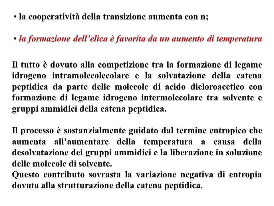 la cooperatività della transizione aumenta con n;