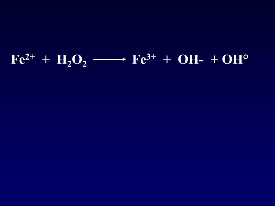 Fe2+ + H2O2 Fe3+ + OH- + OH°