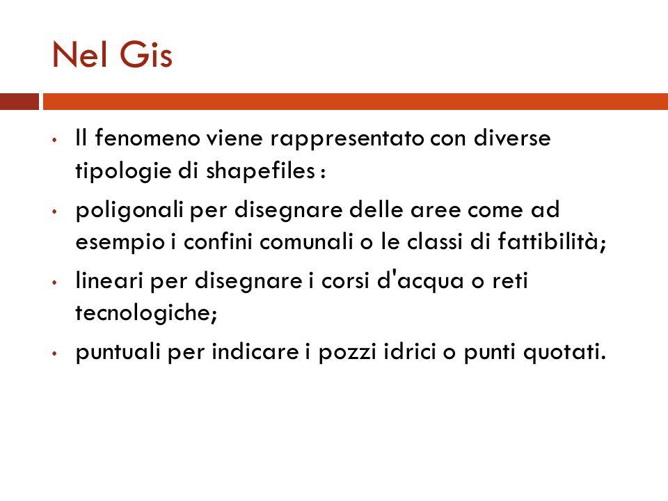 Nel GisIl fenomeno viene rappresentato con diverse tipologie di shapefiles :