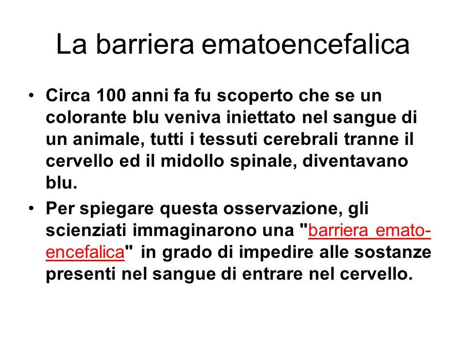 La barriera ematoencefalica