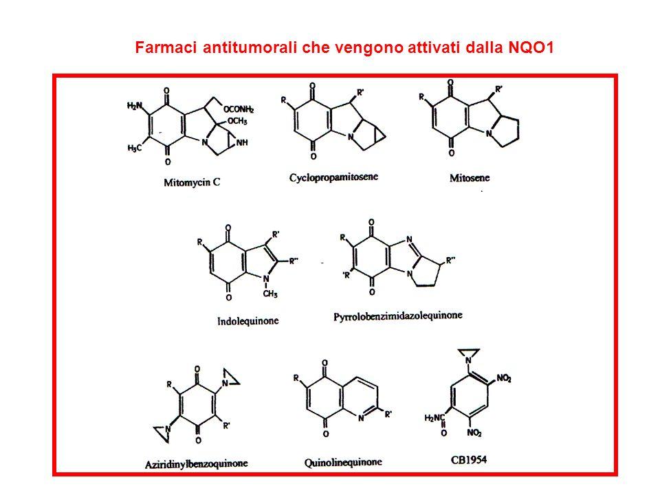 Farmaci antitumorali che vengono attivati dalla NQO1