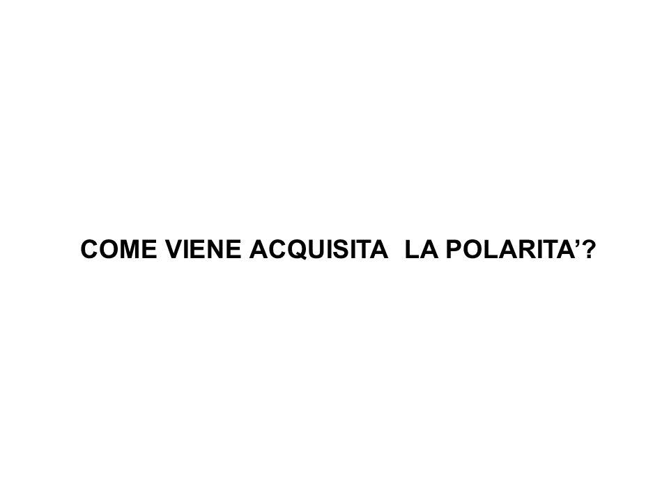 COME VIENE ACQUISITA LA POLARITA'